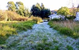 bulwer_moniquevanderwalt_weather_frost_kwazulunatal (2)-1.jpg