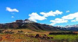 bulwer_kwazulunatal_drakensberg_southafrica (2)-1.jpg
