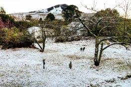 bulwer_kwazulunatal_snow_drakensberg (9)-1.jpg