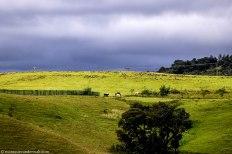 bulwer_weathertravel_kwazulunatal_drakensberg (3).jpg