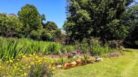 cottageImvana_airbnb_drakensberg_bulwer_kzn_kwazulunatal_southafrica (10).jpg