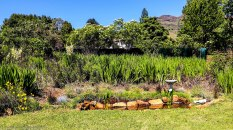 cottageImvana_airbnb_drakensberg_bulwer_kzn_kwazulunatal_southafrica (11).jpg