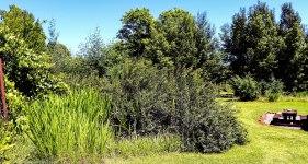 cottageImvana_airbnb_drakensberg_bulwer_kzn_kwazulunatal_southafrica (24).jpg