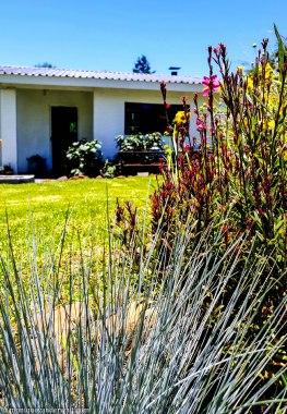 cottageImvana_airbnb_drakensberg_bulwer_kzn_kwazulunatal_southafrica (28).jpg