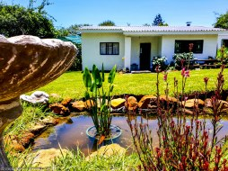 cottageImvana_airbnb_drakensberg_bulwer_kzn_kwazulunatal_southafrica (29).jpg