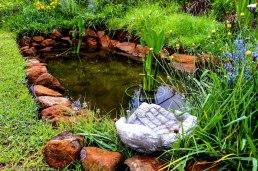 cottageImvana_drakensberg_bulwer_kzn_kwazulunatal_southafrica (2).jpg