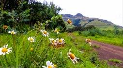 cottageimvana_bulwer_kwazulunatal_drakensberg_southafrica (4).jpg