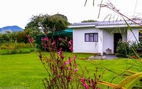 cottageImvana_airbnb_drakensberg_bulwer_kzn_kwazulunatal_southafrica (54).jpg