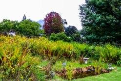 cottageImvana_airbnb_drakensberg_bulwer_kzn_kwazulunatal_southafrica (55).jpg