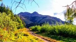 cottageimvana_bulwer_kwazulunatal_drakensberg_SA (11).jpg