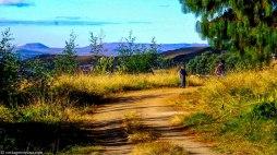 cottageimvana_bulwer_kwazulunatal_drakensberg_SA (12).jpg