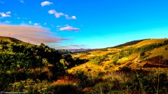 cottageimvana_bulwer_kwazulunatal_drakensberg_SA (14).jpg
